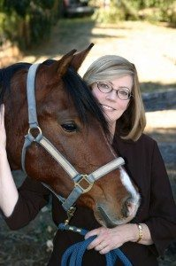 animal communication with horses